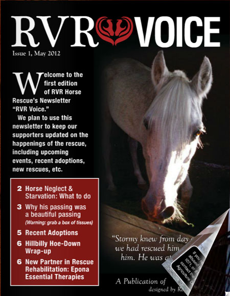 rvr-voice-newsletter-design-1